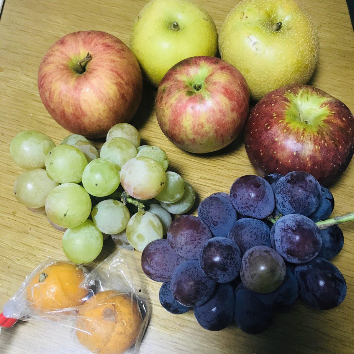 平田観光農園で秋の果物狩り♪【ちょうど狩り】を体験してきたin2019